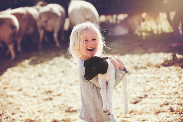 A beautiful smiling 4-5-year-old young girl holding a young black and white lamb in her arms whilst smiling in a sheep pen with other sheep and straw Koo Valley Montagu Klein Karoo Western Cape South Africa
