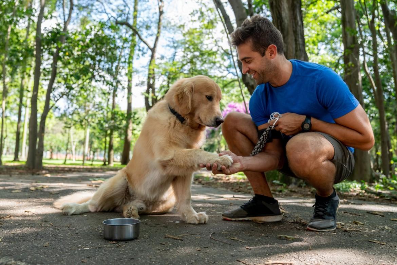 Healthbenefitswalkingdog-min